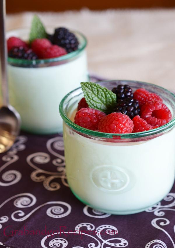 Homemade yougurt